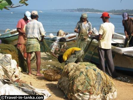 sri_lanka_negombo_fish_market_fishermen1