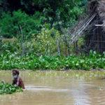 nepal-floods-reuters_650x400_41503908981